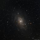 M33,                                Albert_Astro