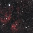 Butterfly nebula (Cygnus),                                Mr. White