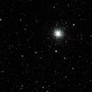 M13, NGC6207,                                Stefano Zamblera