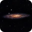 NGC 253 - Sculptor Galaxy,                                Cluster One Obser...