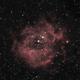 Rosette Nebula,                                Fabian Vanbellinghen