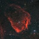 Sh2-129 Nebulosa  pipistrello,                                Federico Bossi