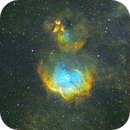 Angry Duck Nebula,                                Roland Christen