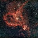 The Heart Nebula,                                Rick Gaps