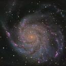 M101 - The Pinwheel Galaxy in LHaRGB,                                Cfosterstars