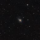 NGC772,                                cbaclawski