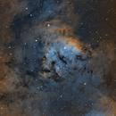 NGC7822 SHO,                                laup1234
