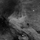 Pelican Nebula,                                Marc