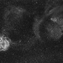 Rosette Nebula - H Alpha,                                Jim Matzger