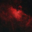 The Eagle Nebula (M16) in Ha + RGB,                                Scott Davis