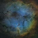 Elephant's Trunk Nebula (IC1396),                                apaps