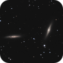 NGC 7332 & NGC 7339,                                Gary Imm