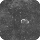 C27 Crescent Nebula-HA-Meade 80ED triplet-Orion flattener-ASI 1600 MM-Pro-widefield,                                Adel Kildeev