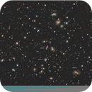 ARPs 71, 122, 172, and 272 in the Hercules Galaxy Cluster Abell 2151,                                elbee