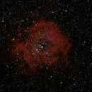 Rosette Nebula,                                Lighthunter