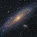 M31: The Andromeda Galaxy ,                                Toshiya Arai