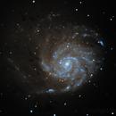 M101,                                RononDex