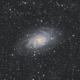 Messier 33,                                Arno Rottal