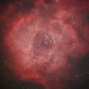 NGC 2244 Rosette Nebula,                                Caddis68