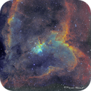 IC 1805 Heart nebula in Cassiopeia,                                Francois Theriault