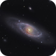 NGC 4274 a Barred Spiral in Coma Berenices,                                Ian Gorin