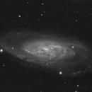 M 106 Luminance,                                speedking80