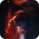 Colored version of my 180 pannels mosaic for the Orion Challenge,                                David Lindemann