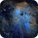 IC410 (The Tadpole Nebula),                                Eric Solís