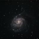 M101 - Combined Sessions,                                David Quattlebaum