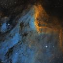 IC 5070 Pelican Nebula,                                Alexander Sorokin
