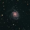 M101 Pinwheel Galaxy,                                bill_w