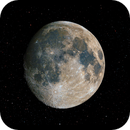 Snow Moon,                                Jason Wiscovitch