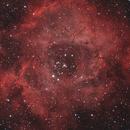 NGC2244 Rosette Nebula,                                Phil Hosey