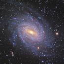 NGC 6744 Galaxy,                                Shang