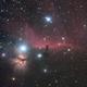horse head nebula  (first light ASI1600 mm-pro ),                                  Marcus Wögerer