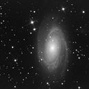 M81,                    guillau012