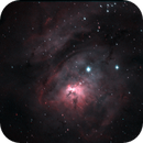 M8,                                Dewald