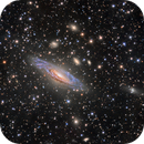 NGC7331 (Jim & Linda),                                Rick Stevenson