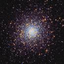 M5 - Rose Cluster,                                Kyle Butler