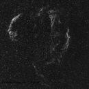 Veil nebula in Ha,                                Francisco