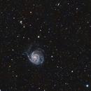M101 & Vicinity LRGB Wide FOV - First Light,                                  Ben Koltenbah
