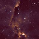 IC 1396 in Narrowband,                                Barczynski