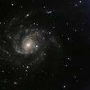M 101 Pinwheel Galaxy,                    Michael