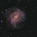 M83,                                SteppeCat