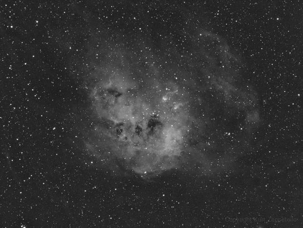 IC 410, NGC 1893, and the Tadpoles - in Ha,                                Kurt Zeppetello