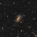 NGC 925,                                Salvatore Iovene