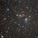IC 4954,                                Lorenzo Siciliano