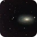 M-63 Sunflower Galaxy in Canes Venatici,                                  Francois Theriault