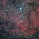 IC1396 _ vdB142,                                Filip Lolic