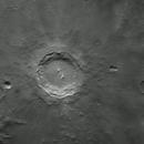 Copernicus,                                Jeffrey Horne